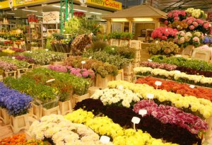 Rungis Market - Wholesale Market