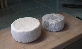 Tuma cheeses