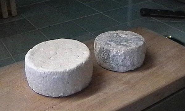 Tuma cheeses