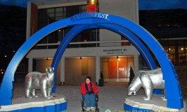 Hammerfest, Kingdom of the Polar Bears