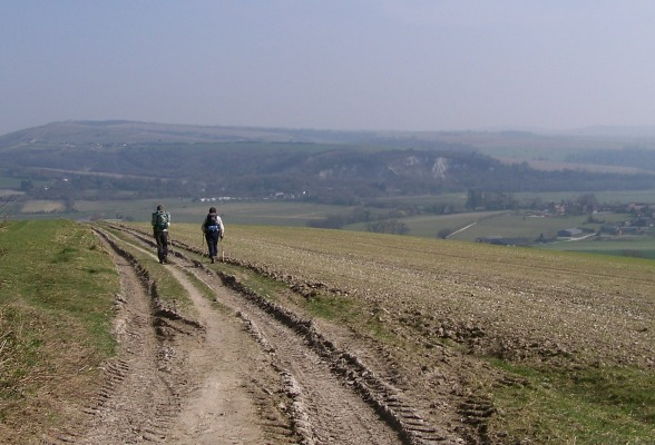 South Downs Way Walking Trail