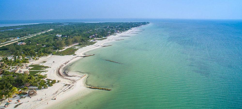 WhaleShark Swimming Cancun Holbox TravelSmart VIP 4