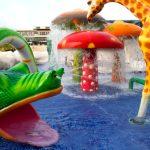 Splash Safari Featured Image TravelSmart VIP blog