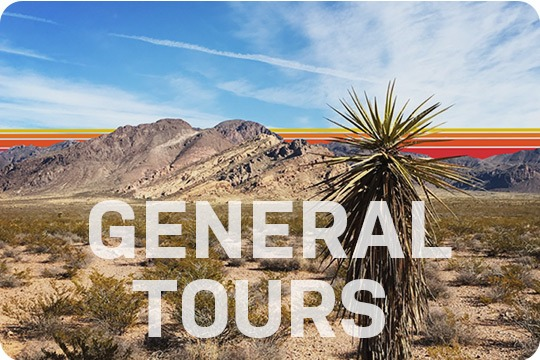 Local Tours Featured Image