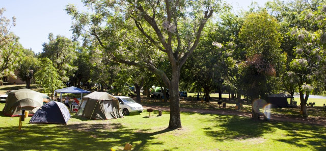 Berg River Resort near Paarl offers fantastic family-style camping in the heart of the Cape Winelands.