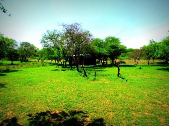 Stoney Ridge Campsite, KwaZulu Natal.