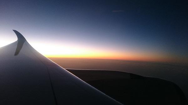 Wing 600x337