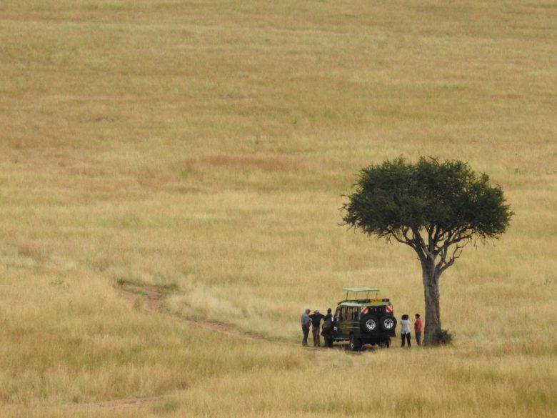 Kenya Maasai Mara grasslands