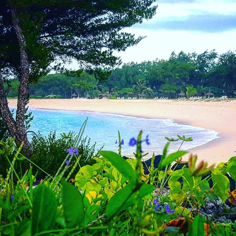 Blue Bay Original