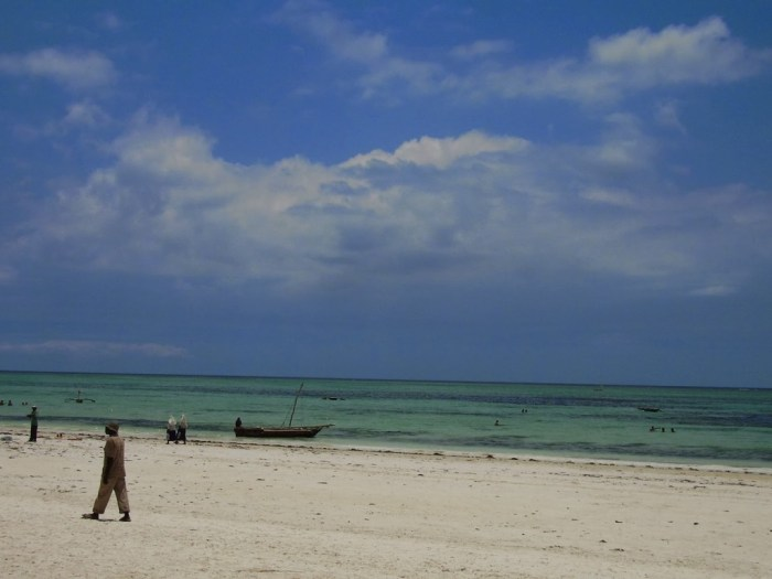 spiaggia-zanzibar