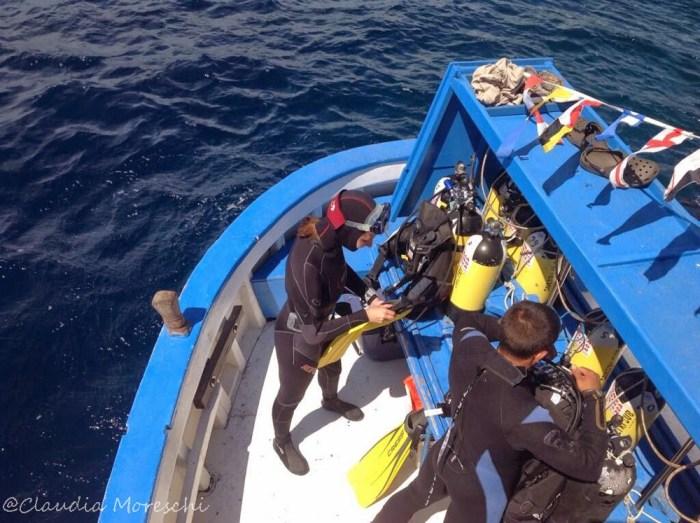 Diving a Ponza