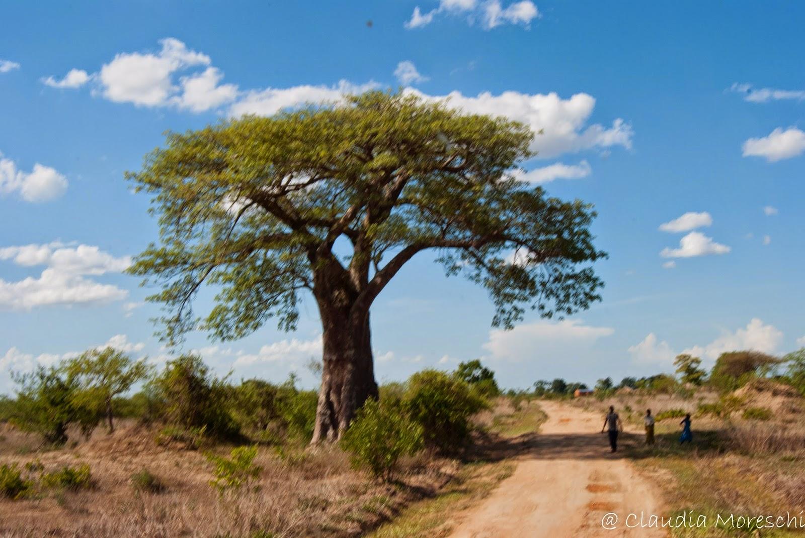 Malawi incontri personali