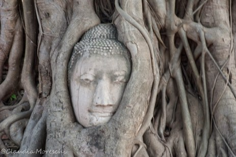 buddha-ayutthaya