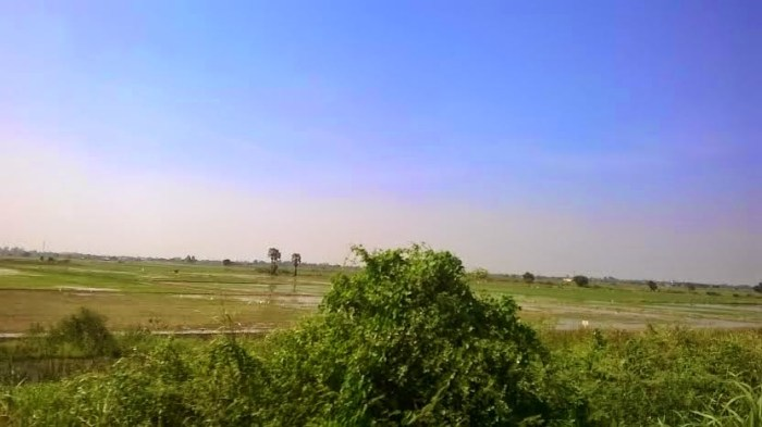paesaggio-dal-treno.thai