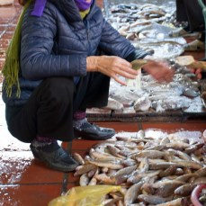 mercato-cat-ba-island2