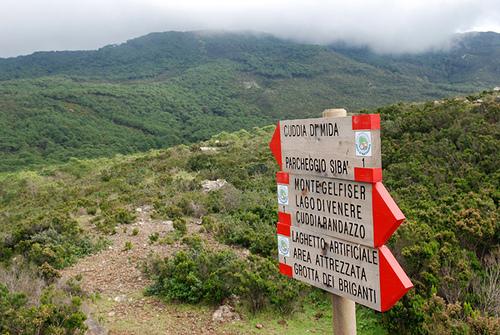 cartelli-trekking