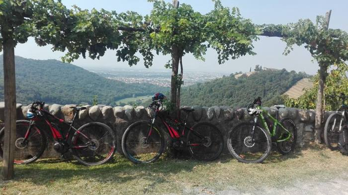 tra i vigneti del Moscato di Scanzo in bici