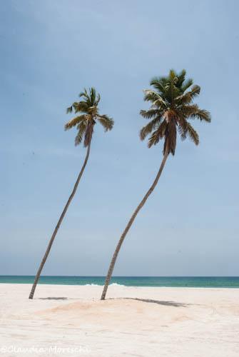 spiaggia-salalah