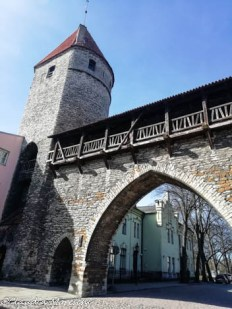 I bastioni di Tallinn