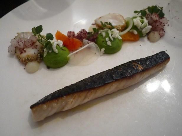 mackerel-bang