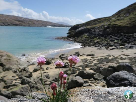 visiting the isle of harris beaches govig beach.