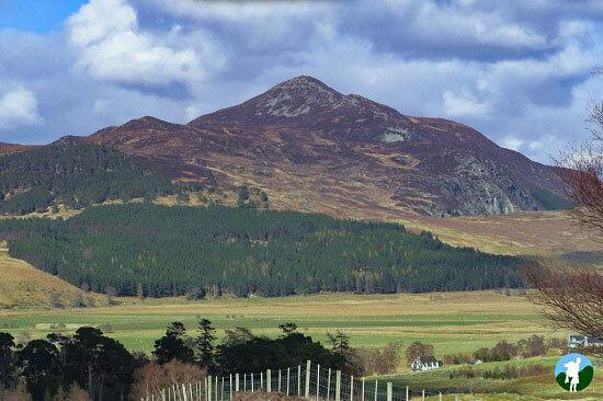 scottish highland road trips central highlands