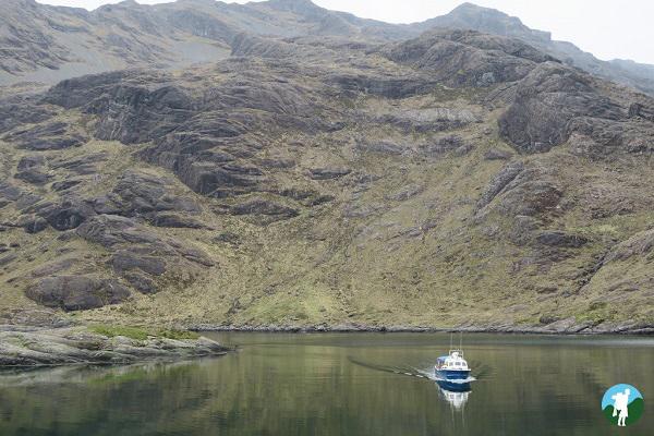 bella jane skye wildlife boat tours