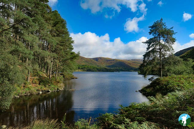 loch trool circuit walk galloway forest park