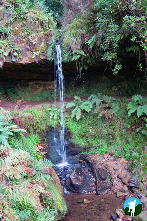 things to do in falkland waterfall