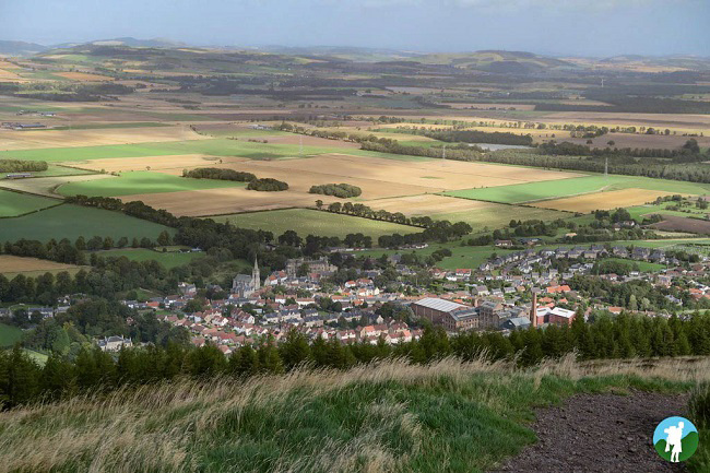 things to do in falkland