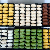 Sweets on Ile de Ré, France 46°12N 1°25W