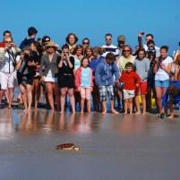 Releasing the turtles on Ile de Ré!