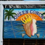 Queen Conch on Harbour Island, Bahamas