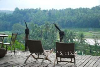 View from Bambu Indah, Bali