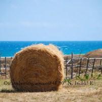 Summer in Puglia