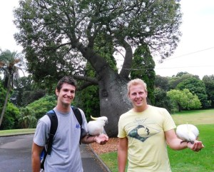 wout and matthias in sydney