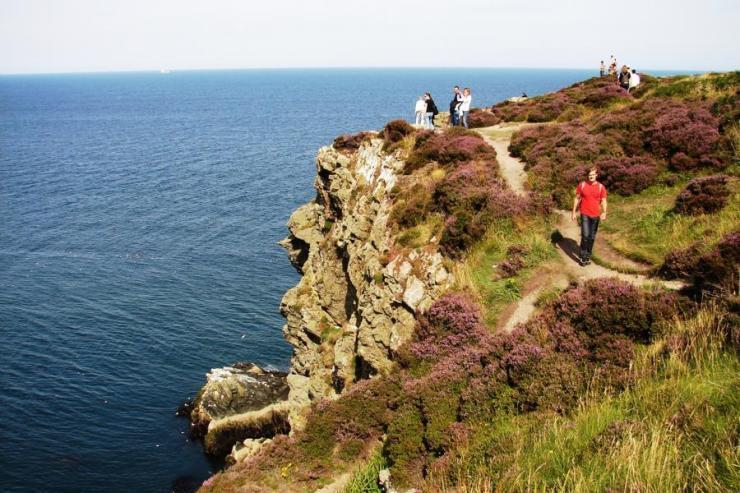 Cliffs Bray