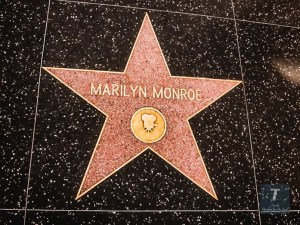 Los Angeles Hollywood WalkofFame   Los Angeles Travel Guide