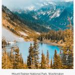 mount rainer national park washington