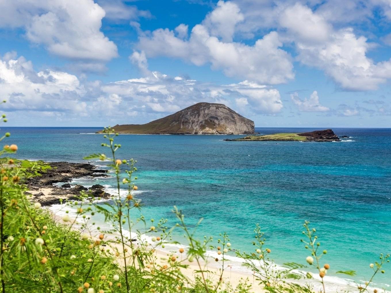 East Oahu   Windward