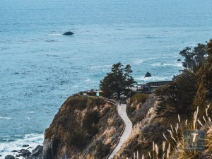 Pacific Coast Highway Big Sur | Pacific Coast Highway Travel Guide