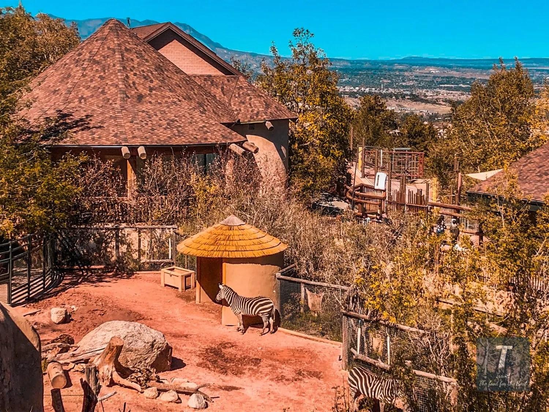 Cheyenne Mountain Zoo Travel Guide