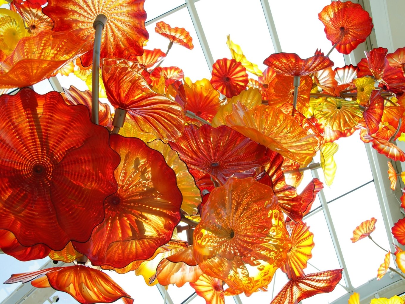 Chihuly Garden and Glass | Seattle