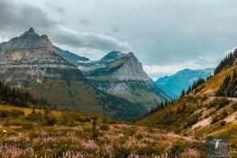 Glacier National Park Montana Travel Guide