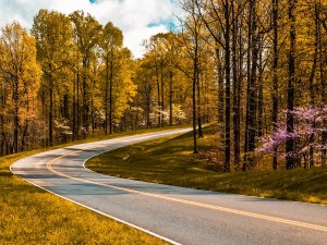 Mississippi Natchez Trace Parkway | Mississippi Travel Guide