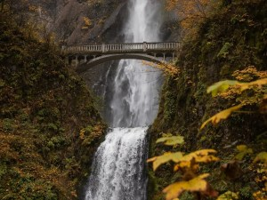 Planning Your Trip To The Multnomah Falls