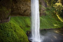 The Ultimate Travel Guide To Silver Falls State Park