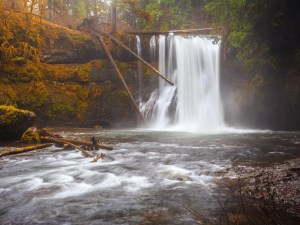 Upper North Falls | Silver Falls State Park