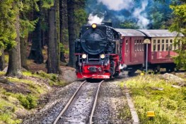 The Ultimate Guide To Conway Scenic Railroad