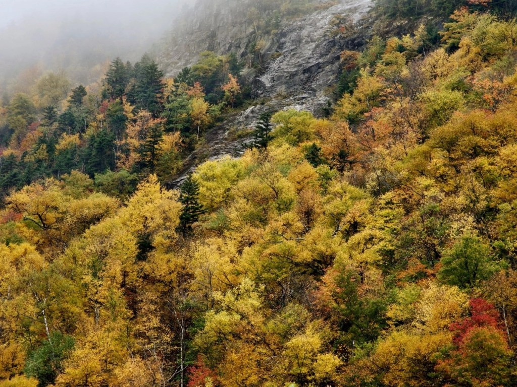 The Ultimate Guide To Franconia Notch State Park